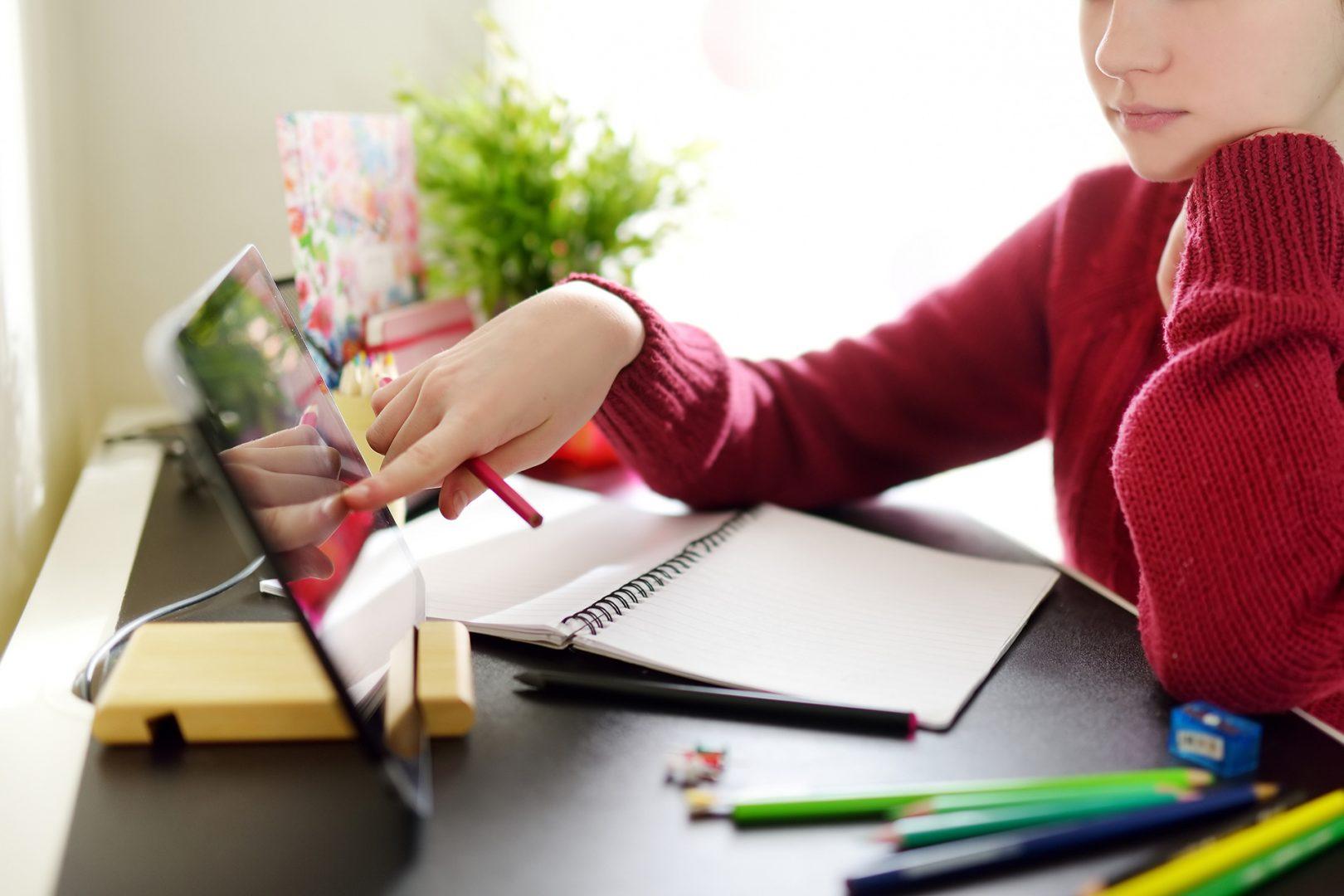 Schiller-Gymnasium - Infotag - Homeschooling